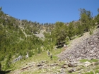 Here are Ken and JJ making their way towards the 9800' saddle above Middle Fork Lake en route to Yellow Lake.