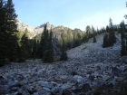 This is where the climbing starts at 9200'. From here we climbed the forested slope on the left to reach the knob at 10400'.