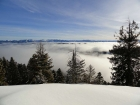 A sea of fog below.