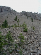 The gully we climbed to get from Swimm Lake over to Iron Basin.