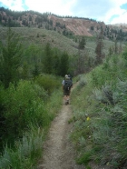Hiking back down the Little Boulder Creek trail.