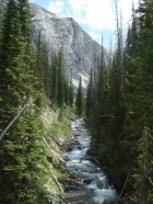 We followed the West Fork Wallowa River most of the first day. Here's a shot taken at about 6700' elevation.