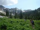 Hiking through an alpine meadow with Cusick Mountain in the background.