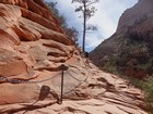 Start of the Angels Landing climb.